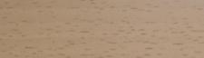 Hrana ABS 22/2 Buk Ellnau WD4017